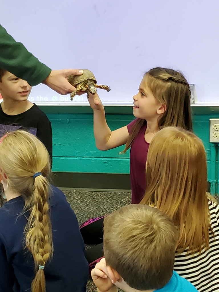 the kids got to touch the turtle